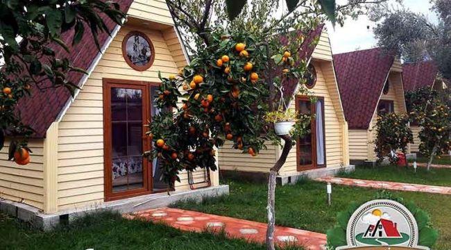 Kazdağları Bungalov Evleri