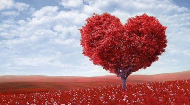 Sevgililer günü nedir ? Niçin kutlanır ? İşte detaylar