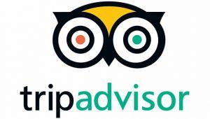 TripAdvisor seyahat eğilimleri raporunu açıkladı