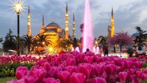 Rus turistler lale festivalini görmek istiyor